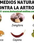 Mejores plantas para aliviar la artrosis – osteoartritis