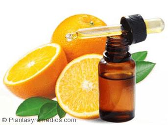 Aceite de naranja para eliminar las termitas