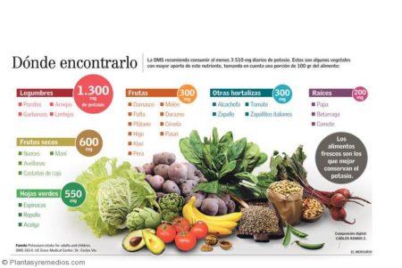 9 Verduras con alto contenido de potasio -Plantas