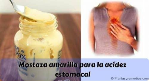 Mostaza amarilla para la acidez estomacal