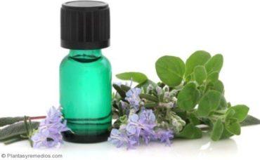 Como usar orégano para tratar el asma