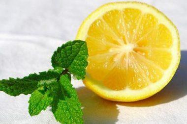 limon-y-menta-para-los-parasitos