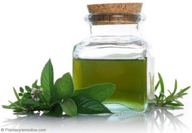 Aceite de menta para curar los problemas digestivos