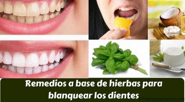 Remedios a base de hierbas para blanquear los dientes