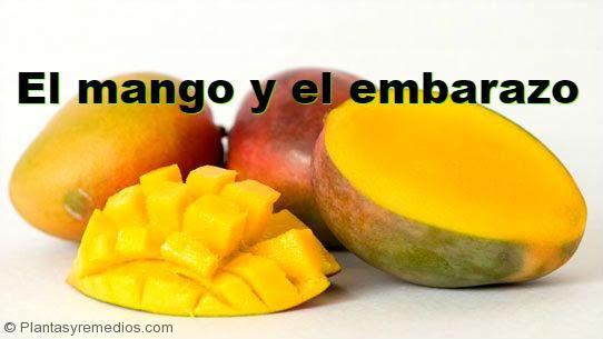 Es seguro comer mango durante el embarazo plantas medicinales remedios caseros medicina - Alimentos buenos en el embarazo ...