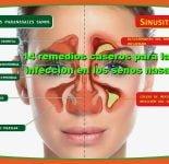 14 remedios caseros para la infeccion en los senos paranasales