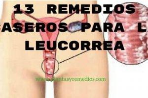 13 Remedios caseros para la leucorrea