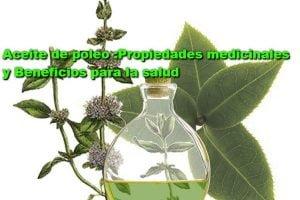 aceite-esencial-de-poleo-menta-propiedades medicinales-beneficios para la salud