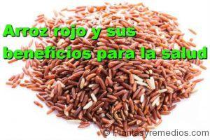 beneficios y propiedades del arroz rojo para la salud