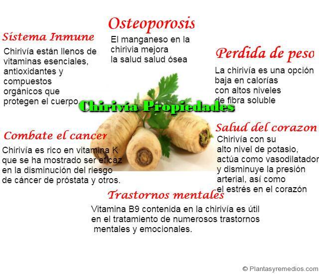 chirivía propiedades medicinales