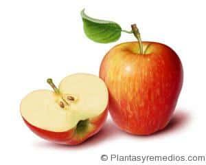 capsulas de ajo acido urico acido urico por todo el cuerpo alimentos que se deben consumir con acido urico alto