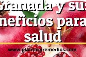 fruta granada beneficios para la salud