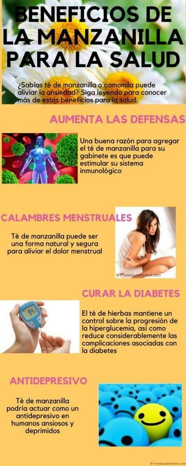 té de manzanilla beneficios y usos medicinales - infografia