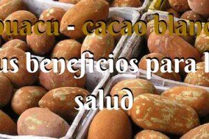 Cupuacu - cacao blanco y sus beneficios para la salud