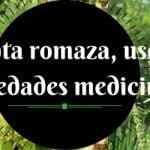 Planta romaza y sus beneficios para la salud
