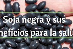 Soja negra propiedades beneficios para la salud