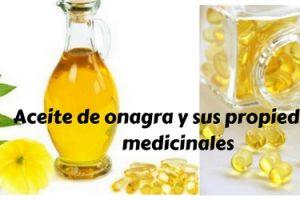 Aceite de onagra y sus propiedades medicinales