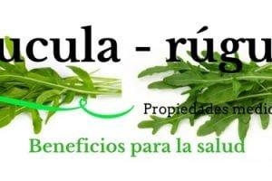 Rucula - rúgula beneficios propiedades medicinales
