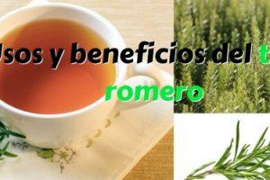 Usos y beneficios del té de romero