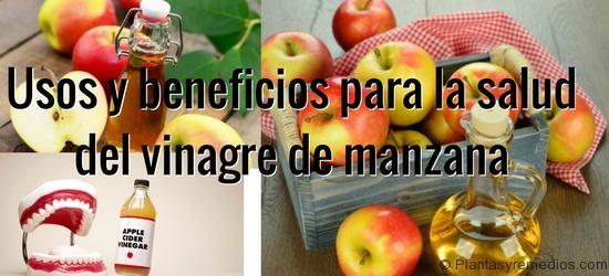 Usos y beneficios para la salud del vinagre de manzana