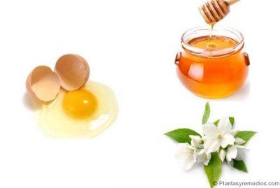 miel , yema de huevo y jazmin para hidratar el cabello seco reseco