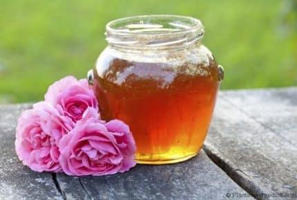 agua de rosas y miel