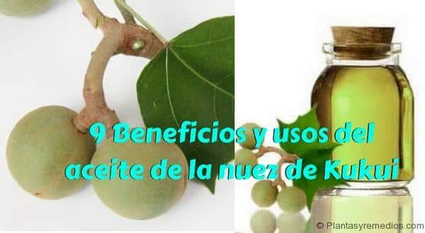 9 Beneficios y usos del aceite de la nuez de Kukui