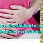 Alergia o Sensibilidad a la avena – Síntomas y tratamientos