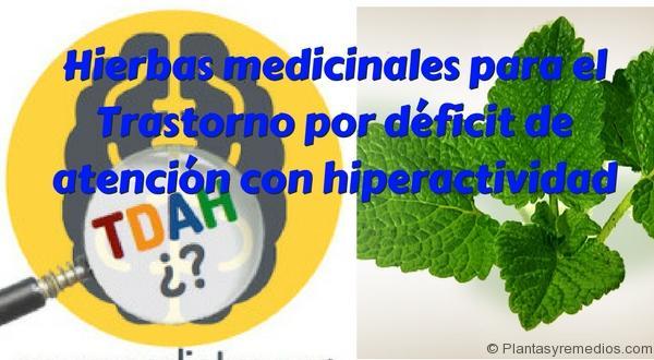 Hierbas medicinales para el Trastorno por déficit de atención con hiperactividad