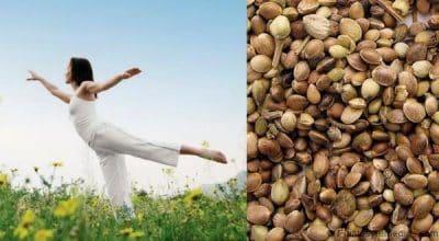semillas de cáñamo Mantiene el equilibrio de las hormonas