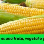 ¿ El maíz es una fruta, vegetal o grano ?